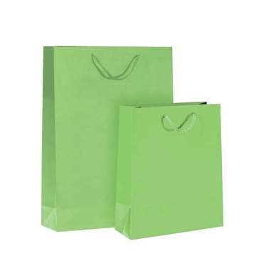 Imagine PUNGA HARTIE PLASTIFIATA MAT VERDE-CORDON 12BUC